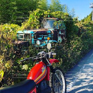 廃車と旧車の写真・画像素材[4514480]