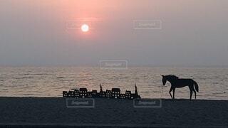 海,空,夕日,屋外,湖,太陽,ビーチ,砂浜,夕焼け,夕暮れ,船,水面,海岸,影,馬,日の出,影絵,童話,ユニコーン,おとぎ話