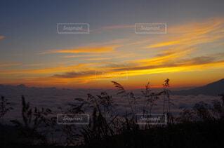 自然,風景,空,屋外,雲,夕暮れ,日の出,草木