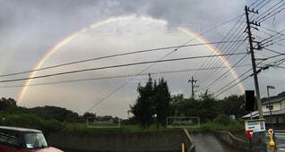 空,屋外,虹,樹木,景観