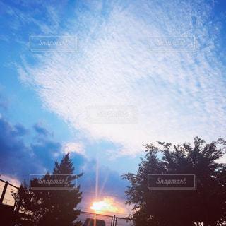 空の写真・画像素材[232617]