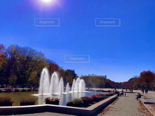 眩しくて青いの写真・画像素材[4555325]