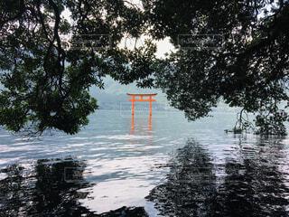 自然,風景,空,屋外,湖,鳥居,水面,樹木