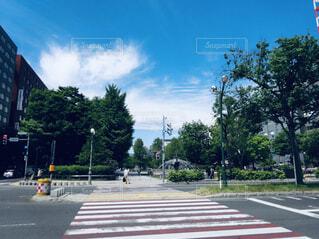 空,公園,屋外,雲,道路,樹木,道,通り,テキスト