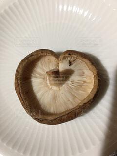 ハートの椎茸の写真・画像素材[4480710]