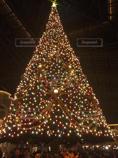 クリスマス,クリスマス ツリー