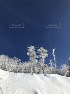 自然,風景,空,冬,雪,屋外,丘,樹木,スキー,冷たい,斜面