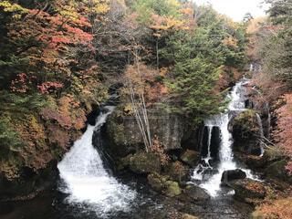 自然,秋,屋外,水面,樹木,岩