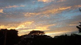 自然,風景,空,屋外,太陽,雲,朝焼け,樹木,日の出