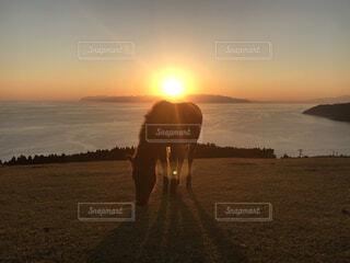 自然,風景,海,空,夕日,屋外,太陽,夕暮れ,水面,海岸,水平線,馬