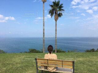 遠くの海を見つめる女性の写真・画像素材[4544936]