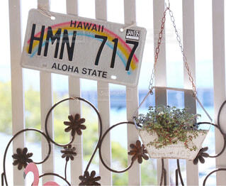 海,花,屋内,植物,青空,ハワイ,草木,オーシャンビュー,テキスト,ナンバープレート,海辺の家