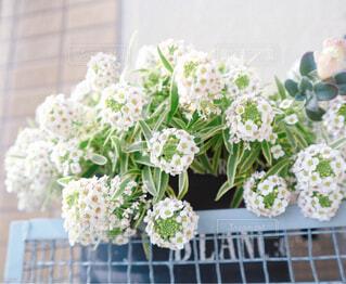 花,屋内,花束,花瓶,結婚式,白い花,小さな花,花柄,可憐,草木