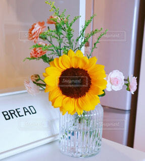 花,屋内,ひまわり,花束,花瓶,ガラス,壁,草木,ガラスの花瓶