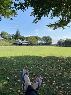 芝生で覆われた畑の上に立っている人の写真・画像素材[4587276]