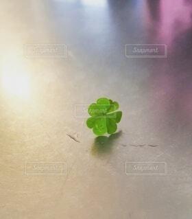 自然,花,緑,葉,ぼかし,クローバー,幸せ,グリーン,四つ葉のクローバー,草木