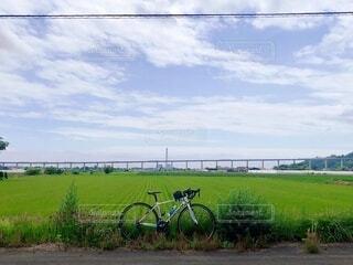 橋,青空,晴天,田んぼ,サイクリング,日中