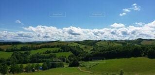 自然,風景,空,緑,草原,雲,青空,北海道,牧場,景色,丘,大自然,大地,高原,パノラマ,草木,士別市