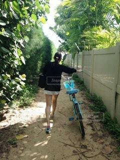 風景,自転車,屋外,小道,樹木,人物,人,地面,冒険,履物