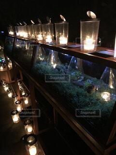 風景,夜,白,幻想的,ランタン,イルミネーション,キャンドル,たくさん,ガラス瓶,明るい,多肉植物,キャンドルナイト,点灯