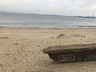 自然,海,空,屋外,砂,ビーチ,砂浜,水面,海岸,地面,流木