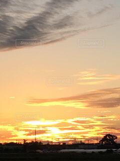 自然,風景,空,建物,屋外,太陽,雲,夕暮れ,夕方,光,樹木,電線,日の入り,電信柱,陽の光,一日の終わり,宵闇
