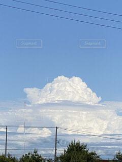 自然,風景,空,夏,屋外,白,雲,晴れ,青空,入道雲,日光,景色,樹木,電線,明るい,電信柱,夏空,草木,積乱雲,もくもく