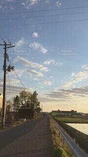 自然,風景,空,春,屋外,太陽,雲,道路,水面,光,樹木,道,風,夕陽,金色,ゴールド,輝き,テキスト