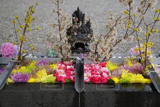 花,桜,椿,観葉植物,龍,菊,花手水
