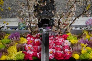 花,桜,椿,龍,草木,菊,花手水