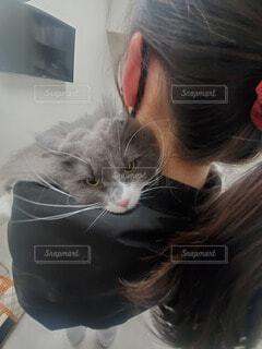 猫,人物,人,しょんぼり,抱っこ,目,寂しい