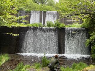 自然,屋外,水,水面,滝,草,樹木,癒し,マイナスイオン