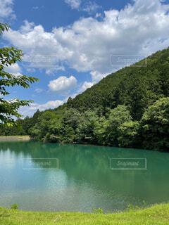 木々に囲まれたエメラルドグリーンの池の写真・画像素材[4484926]