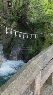 自然,水,山,滝,美しい,涼しげ,吉野,滝の音,東の滝,ひむかしの滝