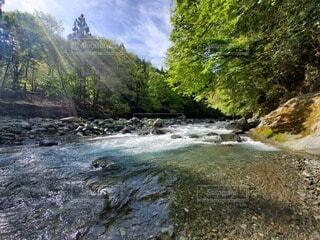 自然,風景,屋外,川,水面,滝,樹木,キャンプ,キャンプ場,運河,草木,ストリーム