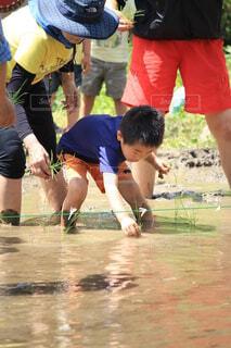 子ども,風景,スポーツ,屋外,人物,人,旅行,地面,幼児,農業,畑,男の子,田植え,お米,履物