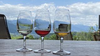 風景,空,食器,ワイン,ボトル,グラス,カクテル,ドリンク,シャンパングラス,ワイングラス,アルコール飲料,バー用の器物
