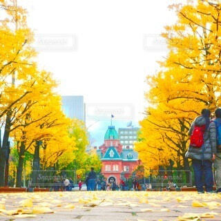 空,屋外,黄色,樹木,絵画