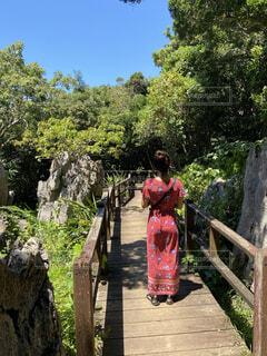 木の前に立っている少女の写真・画像素材[4590426]