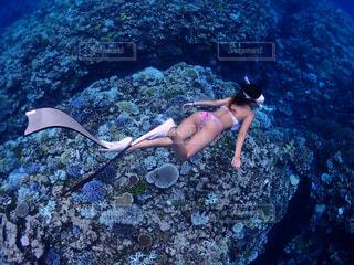 水の中を泳いでいる人の写真・画像素材[4590438]