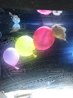 魚,カラフル,水族館,水面,風船,水槽,サカナ,水風船,フグ,ふぐ