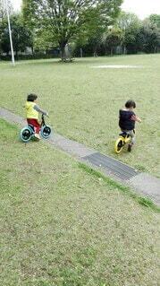 子ども,公園,乗り物,自転車,屋外,草,仲良し,樹木,人,幼児,双子,少年,おそろい,コーデ,遊び場,ツインズ,キックバイク,キックスクーター,自転車のホイール