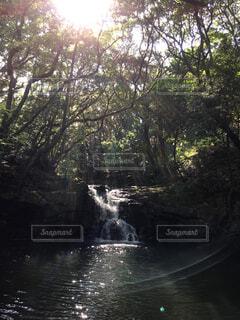 自然,屋外,湖,水面,滝,樹木