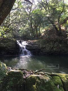 自然,屋外,川,水面,滝,樹木,岩