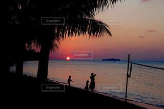 ヤシの木のある浜辺の人々のグループの写真・画像素材[4630435]