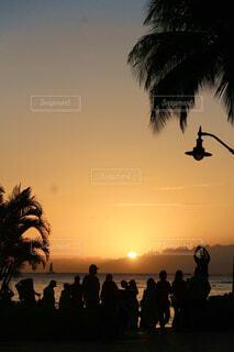 ヤシの木のある浜辺の人々のグループの写真・画像素材[4630462]