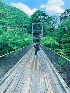 空,屋外,緑,吊り橋
