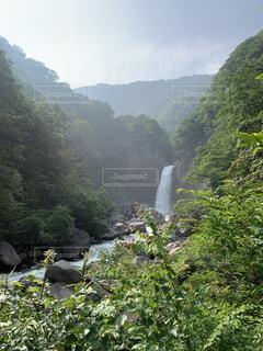 自然,屋外,水面,霧,山,滝,樹木,渓谷