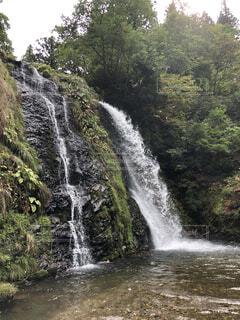 自然,夏,森林,屋外,水面,滝,樹木,涼しげ