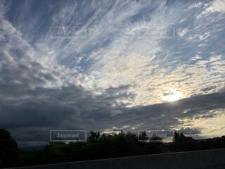 自然,風景,空,屋外,太陽,雲,夕方,樹木,くもり